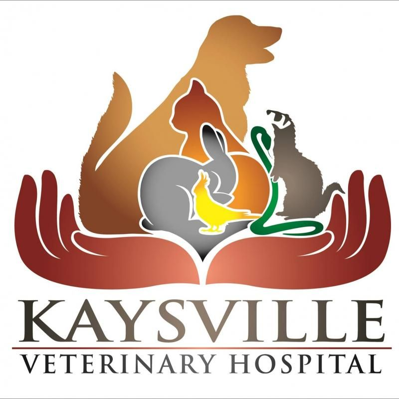 Kaysville Veterinary Hospital